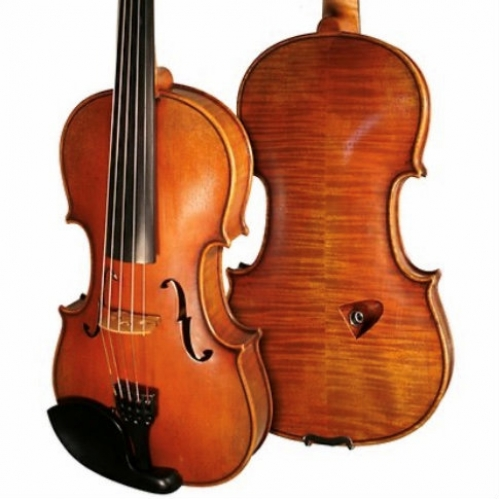 Bridge Tasman 5-String Electro Acoustic Violin With Oblong Hard Case