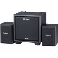 Roland CM110 CUBE Monitor, Secondhand