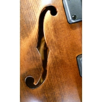 Marleaux Contra 5 String Semi-Acoustic Bass Guitar, Old Violin Finish