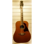Eko Rio Bravo Acoustic Guitar, Pre-Owned