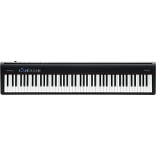 Roland FP30 Portable Piano in Black (With Built-In Speakers)