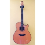 Fylde Magician Electro Acoustic Guitar with Hiscox Hard Case - Secondhand