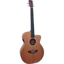 Ashbury Lindisfarne Electro Acoustic Tenor Guitar in Natural with Case (GR36116)