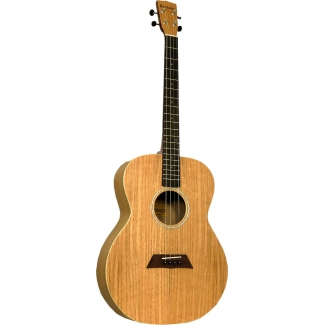 Ashbury AT40 Tenor Guitar in Flamed Oak (GR36112)