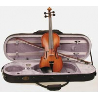 Stentor Graduate Violin 4/4 with Case, Bow & Workshop Set Up (#1542A)