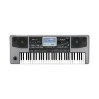 Korg PA900 Professional Arranger Keyboard
