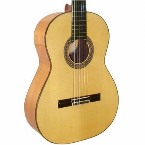 Mendieta Professional Flamenco Guitar with Hiscox Hard Case