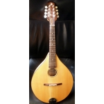 Phil Davidson Mandolin, 2005, Secondhand