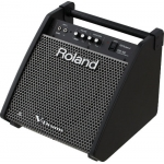 Roland PM100 Personal Monitor