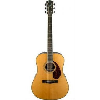 Fender PM1 Standard Dreadnought, Natural