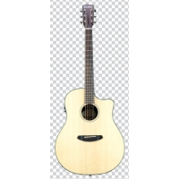Breedlove Pursuit Dreadnought Ebony Electro Acoustic Guitar