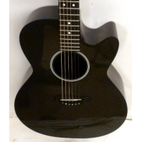 RainSong WS1000N2 Classic Electro Acoustic Guitar with Case, Secondhand