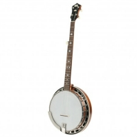 Recording King RK-R25 5-String Banjo, Secondhand