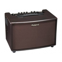 Roland AC60 Acoustic Guitar Combo With Rosewood