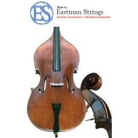 Eastman Sinfonica Double Bass, Instrument Only (BI020/BI019)
