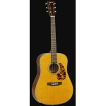 Tanglewood TW40 DAN Dreadnought Acoustic Guitar