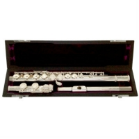 Trevor James 10X Flute with Case & Cover (3041EAW)