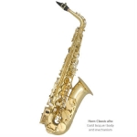 Trevor James 'Horn' Classic II Alto Sax Outfit with Back-Pack Case (3722G)