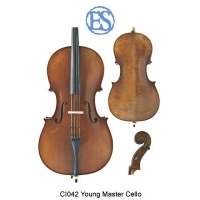 Eastman Young Master Cello, Instrument Only (CI042)